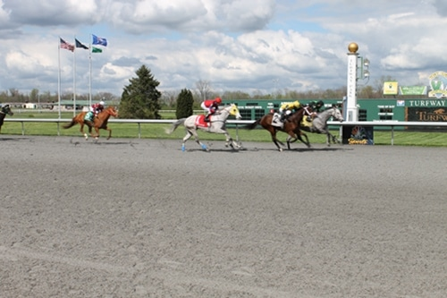 Men reaching at finish line in horse racing competition.