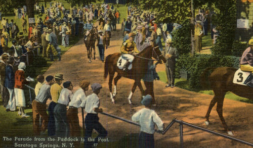 Crowd seeing the winning position number on horse body illustration.