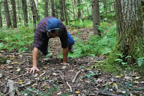 Vintage man crawling in forest.