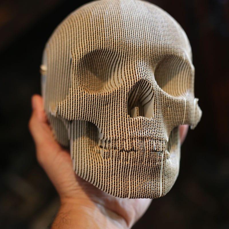 3-d skull puzzle memento mori