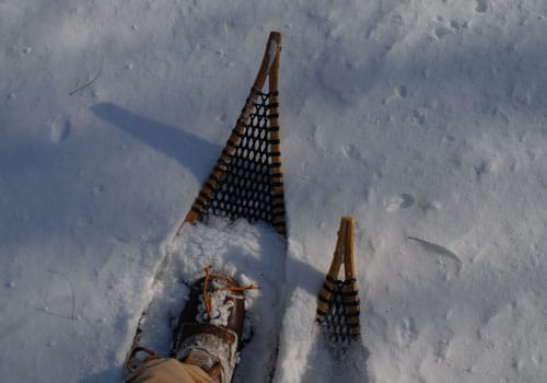 traditional snowshoes wood and rawhide tips