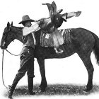 Thumbnail image for Saddle Up! How to Bridle and Saddle a Horse