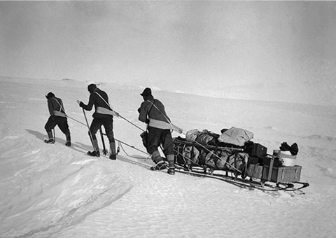 Vintage south pole explorers pulling sledge over snowy landscape.
