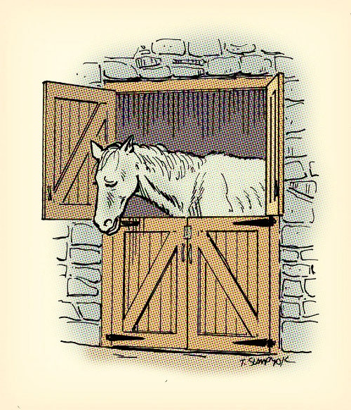 Illustration of unused horse.