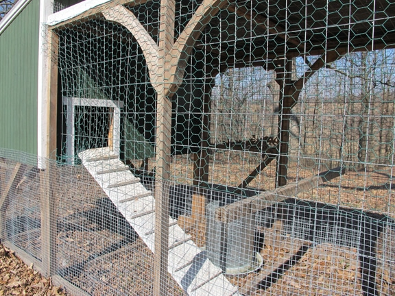 Wire mesh enclosure to protect from predators.