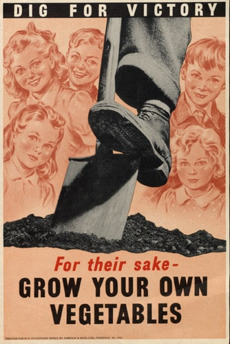 Vintage gardening poster 1950s grow your own.