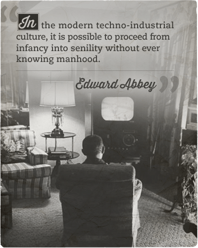 Quote about modern techno-industrial culture by Edward Abbey.