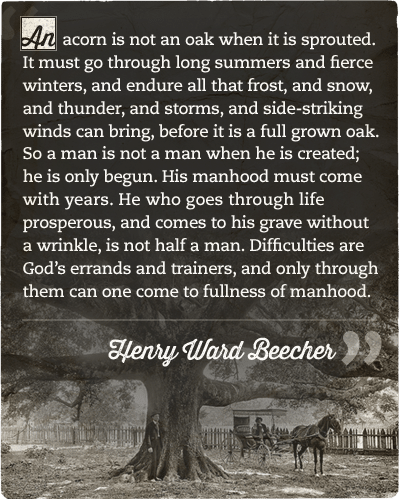 Henry ward beecher's quote about acorn oak fullness of manhood.