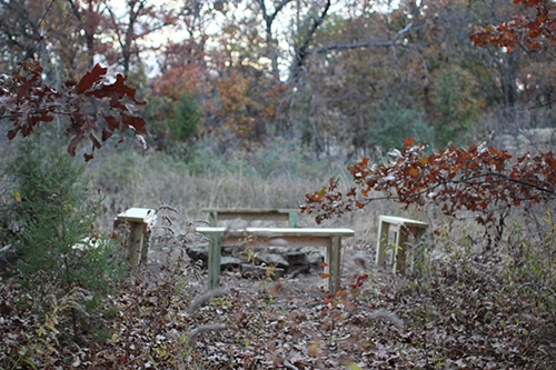 Four benches placed around the leaves.