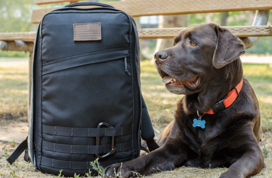 goruck gr1 black backpack with dog sitting next to it
