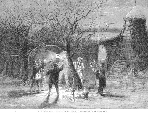 Wassail illustration english tradition.