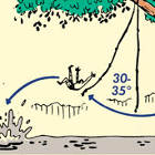 Thumbnail image for How to Make a Rope Swing and Fly Like Tarzan: An Illustrated Guide