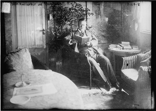 Theodore teddy roosevelt reading in study in chair.