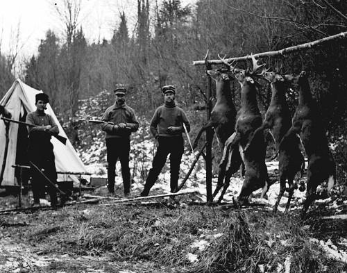 vintage men hunters standing outside tent dead deer hanging branch