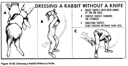dressing a rabbit without a knife air force survival manual