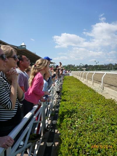 Crowd looking horse racing.