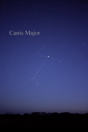 Representation of Canis major on sky.