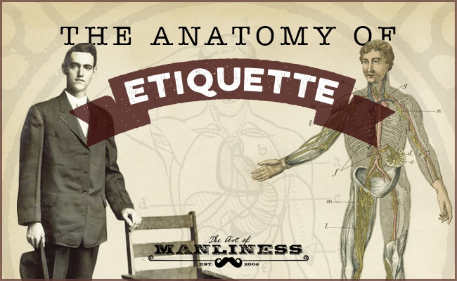 The anatomy of etiquette illustration.