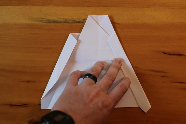Fold the wings in again, this time so the outside edges meet.