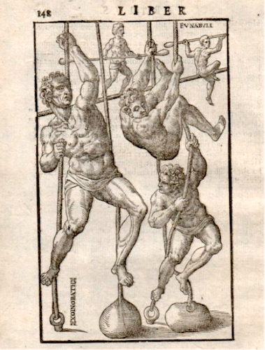ancient greek illustration climbing ropes