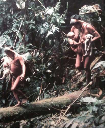 vintage gatherer women in jungle carrying children