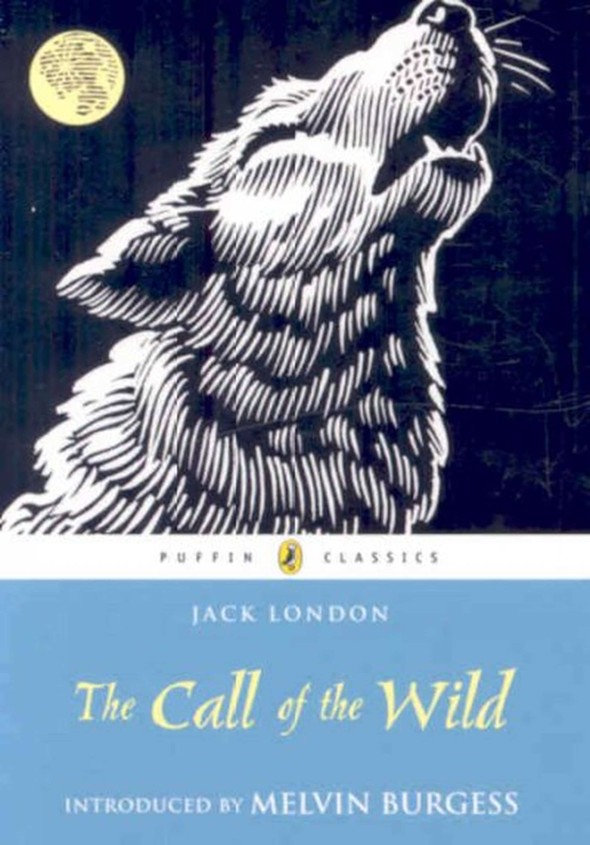 Jack london the call of the wild book report