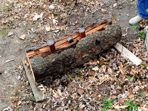 carved axe handle. log being split in half wedges placed crack carved axe handle