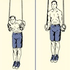Thumbnail image for How to Perform a Muscle-Up: An Illustrated Guide