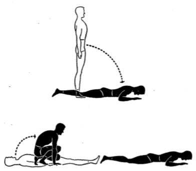 grass stationary drill