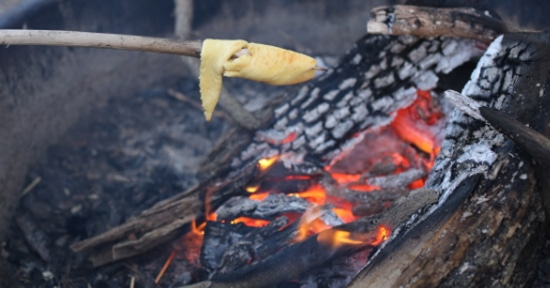 biscuits bread cooking on stick over fire