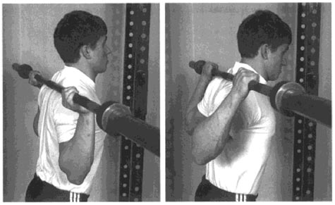 Man lifting barbell behind head without weights.
