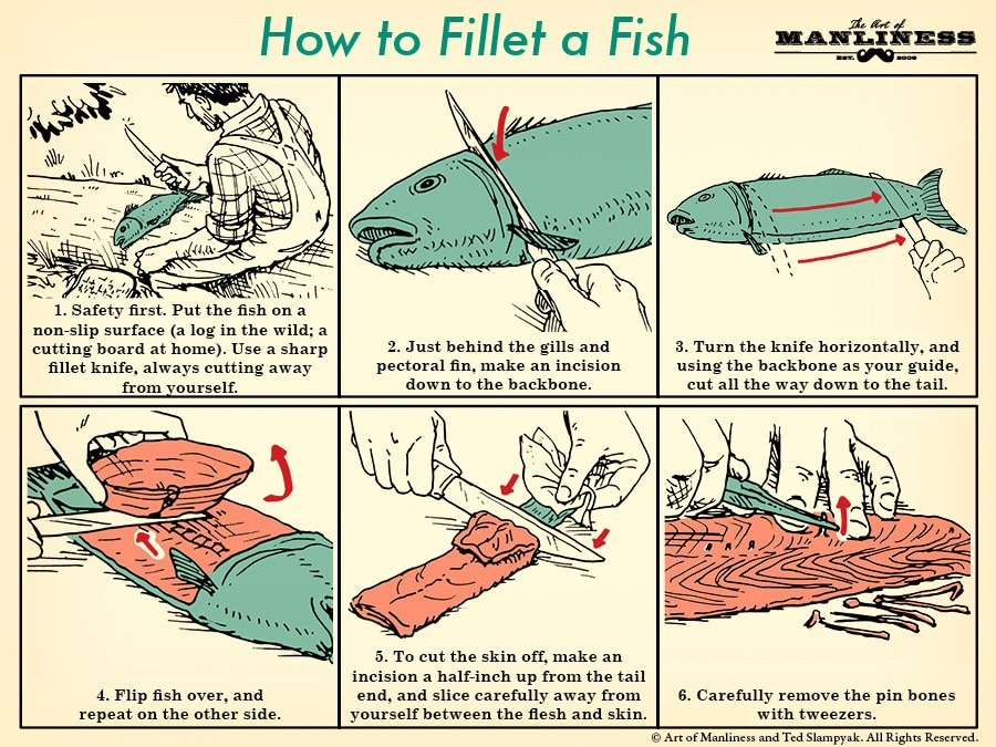 how to fillet a fish an illustrated guide the art of