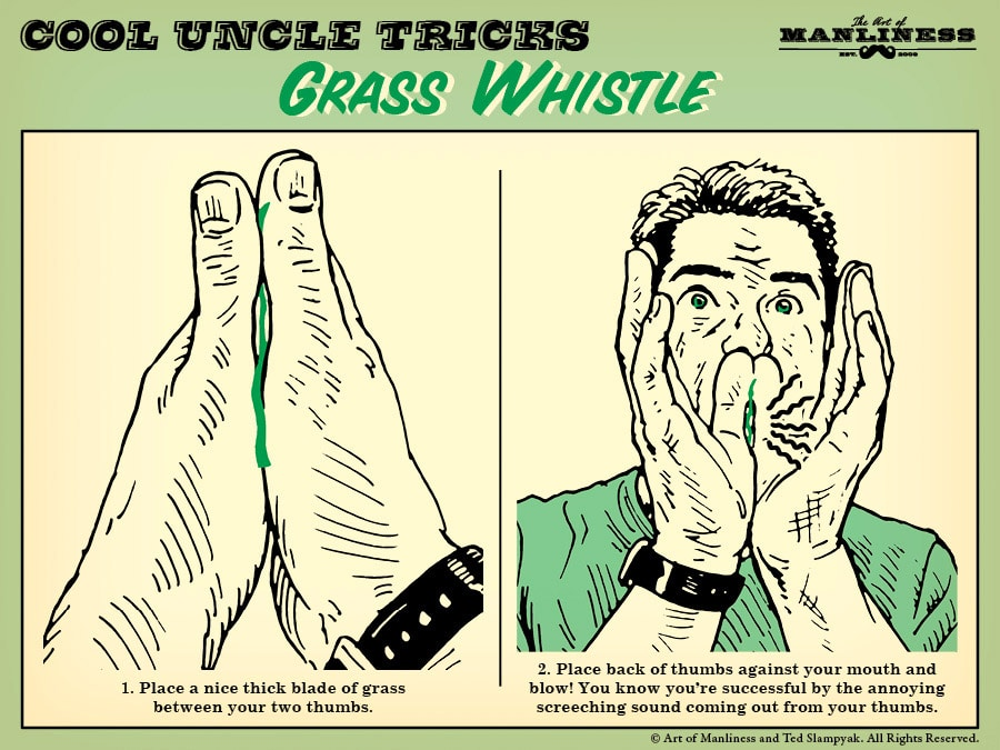 1. Place a nice thick blade of grass between your thumbs. 2. Place back of thumbs against your mouth and blow! You know you're successful by the annoying screeching sound.