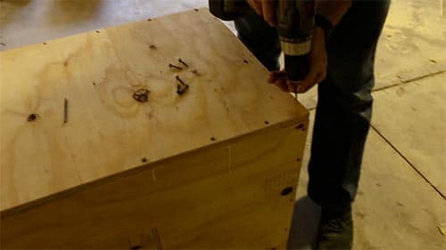 Screwing plywood boards together to make a box.