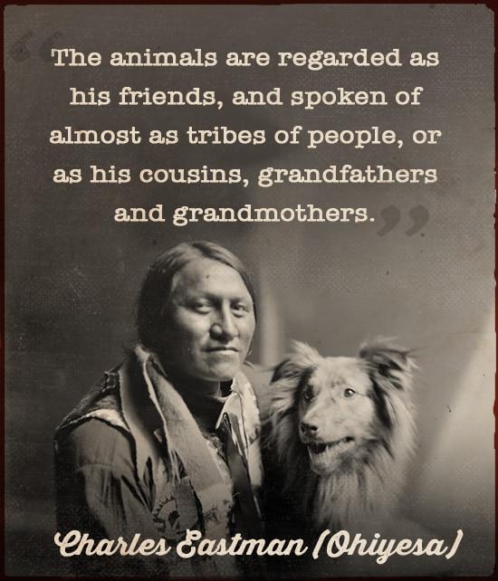 sioux indian quote wisdom animals friends charles eastman