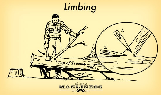 man limbing a tree with an ax illustration