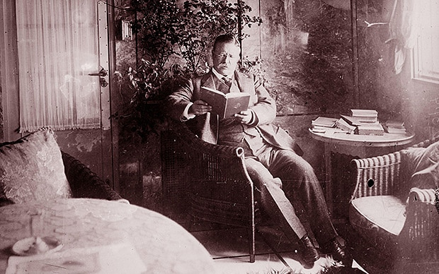 teddy theodore roosevelt reading a book in sitting room
