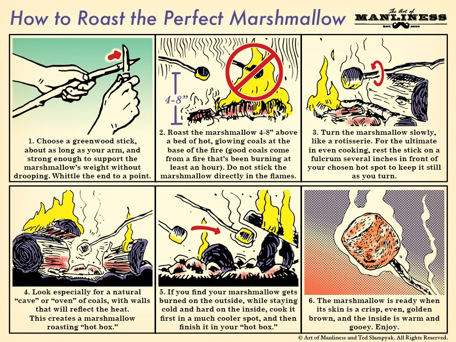 How to roast the perfect marshmallow illustration.