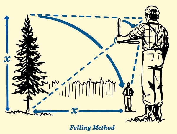 felling method for estimating tree height