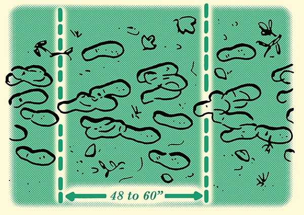 determining number of people in a group with footprints illustration