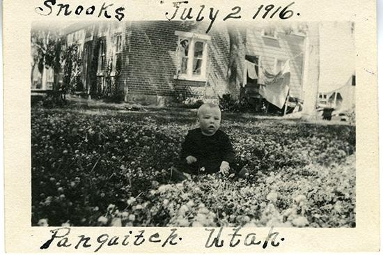 wmdhurst1916-2