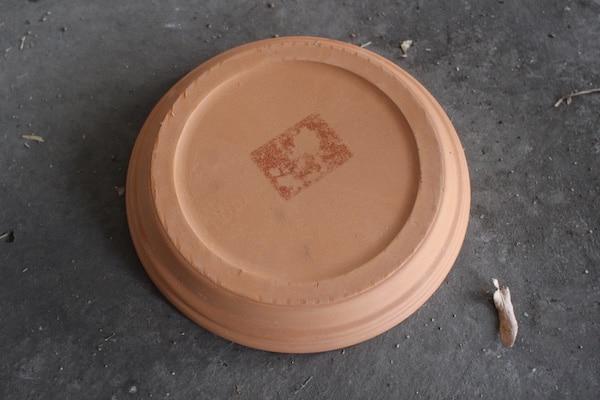 Tray of clay plant.