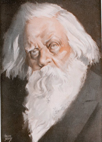 Sir Henry parkes illustration.