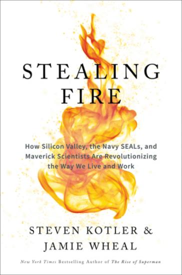 Stealing fire by Steven Kotler & jamie wheal.