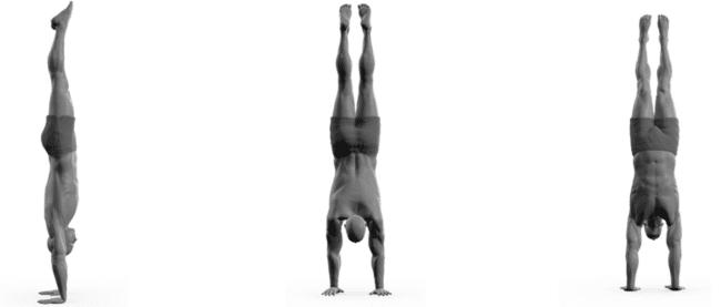 Freestanding Handstand exercise illustration.