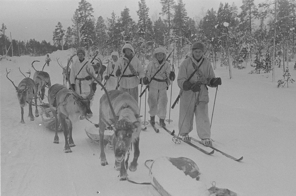 Finnish soldiers on skis with reindeer wwii.