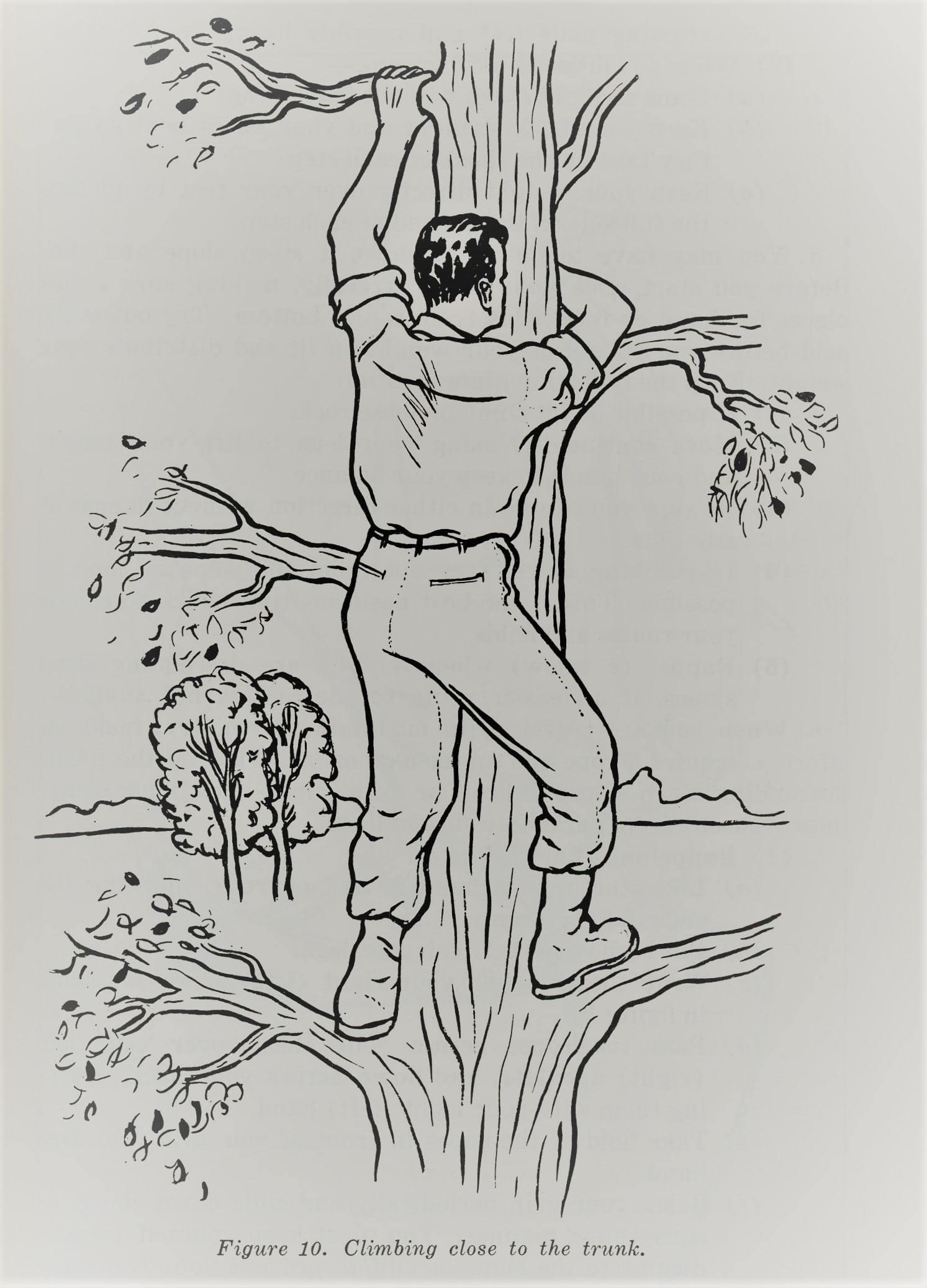 A man climb on a tree illustration.