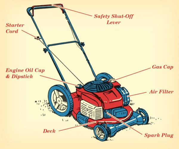 Lawn mower parts anatomy illustration.