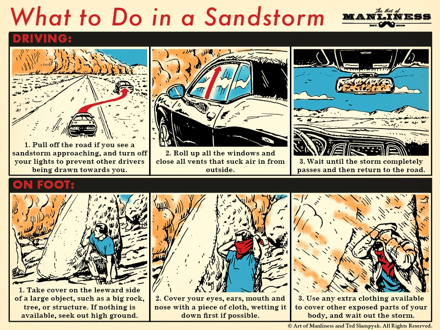 what to do in a sandstorm illustration step-by-step diagram