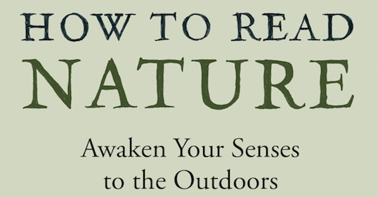 Podcast #343: How to Read Nature — Awakening Your Senses to the Outdoors | The Art of Manliness